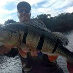 Acampamento para Pesca Selvagem na Amazônia
