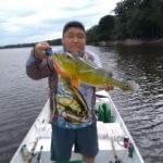 Acampamento Selvagem e Pescaria Esportiva de Tucunarés na Amazônia