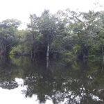 Pacotes para Pesca Esportiva e Acampamento na Amazônia