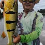 Pacote de Acampamento e Pesca Esportiva na Amazônia
