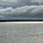 Pesca de Tucunare nos Rios do Amazonas