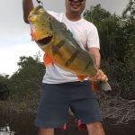 Pesca de Tucunaré