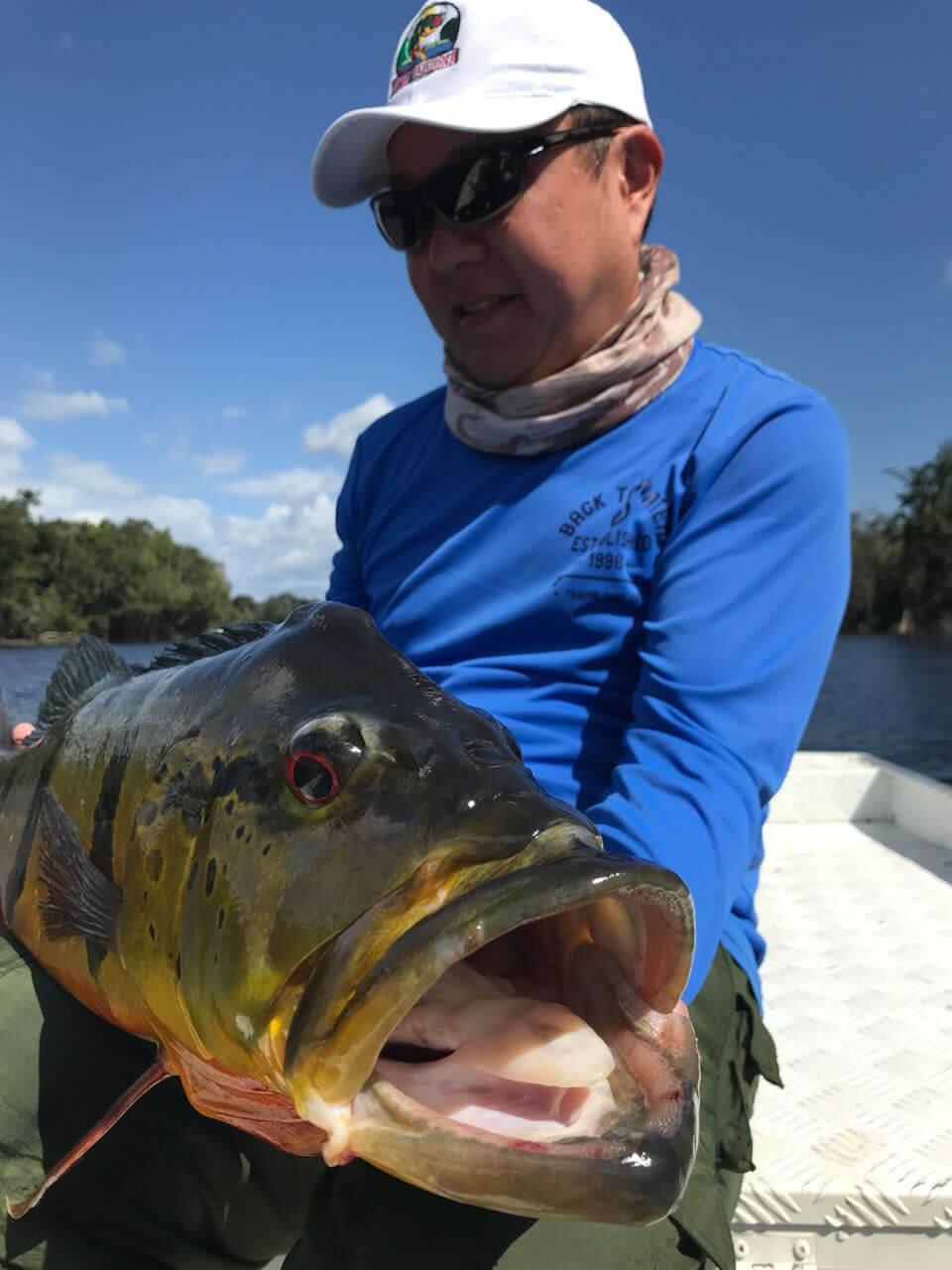 Pesca de Tucunaré no Rio Negro e Afluentes