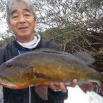 Pesca Esportiva de Tucunaré