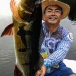 Pescaria Esportiva de Tucunaré