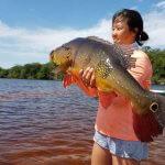 Acampamento Selvagem e Pescaria Esportiva na Amazônia